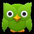 Aprenda inglês no seu Android com o Duolingo