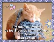 Gracias Sor Cecilia, ante todo por su apreciada amistad, y por el premio a las manualidades