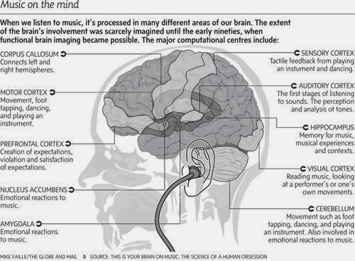 how does music affect our brain