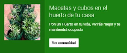 """Únete a la comunidad de Google+ """"Macetas y cubos en el huerto de tu casa"""""""