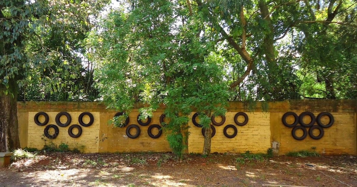 projeto horta e jardim na escolaQuímica Horta Escolar e Jardim