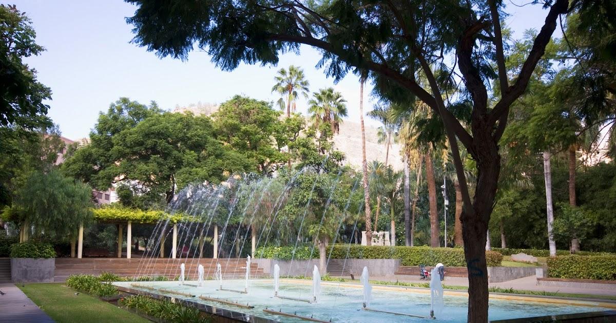 Imagenes de tenerife descubrela parque municipal - Parques infantiles en santa cruz de tenerife ...