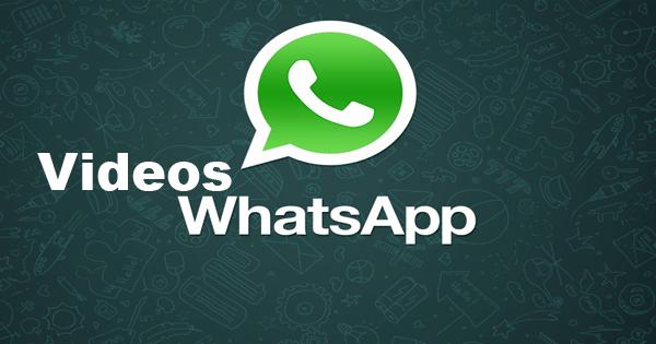 Pacote de vídeos para Whatsapp Parte 2 ~ Droidinho Blog