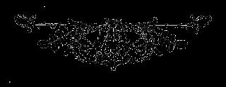 printable rose design illustration