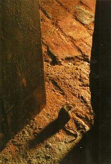 Мышь па пороге