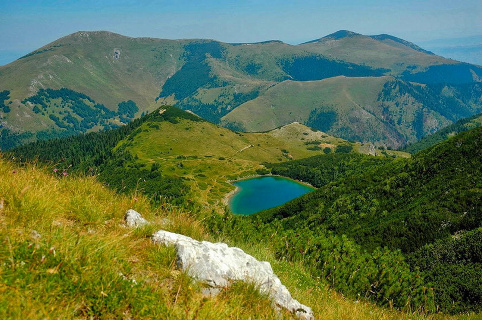 Full HD Lake Lush Green Nature Desktop Backgrounds Image Wallpaper Free