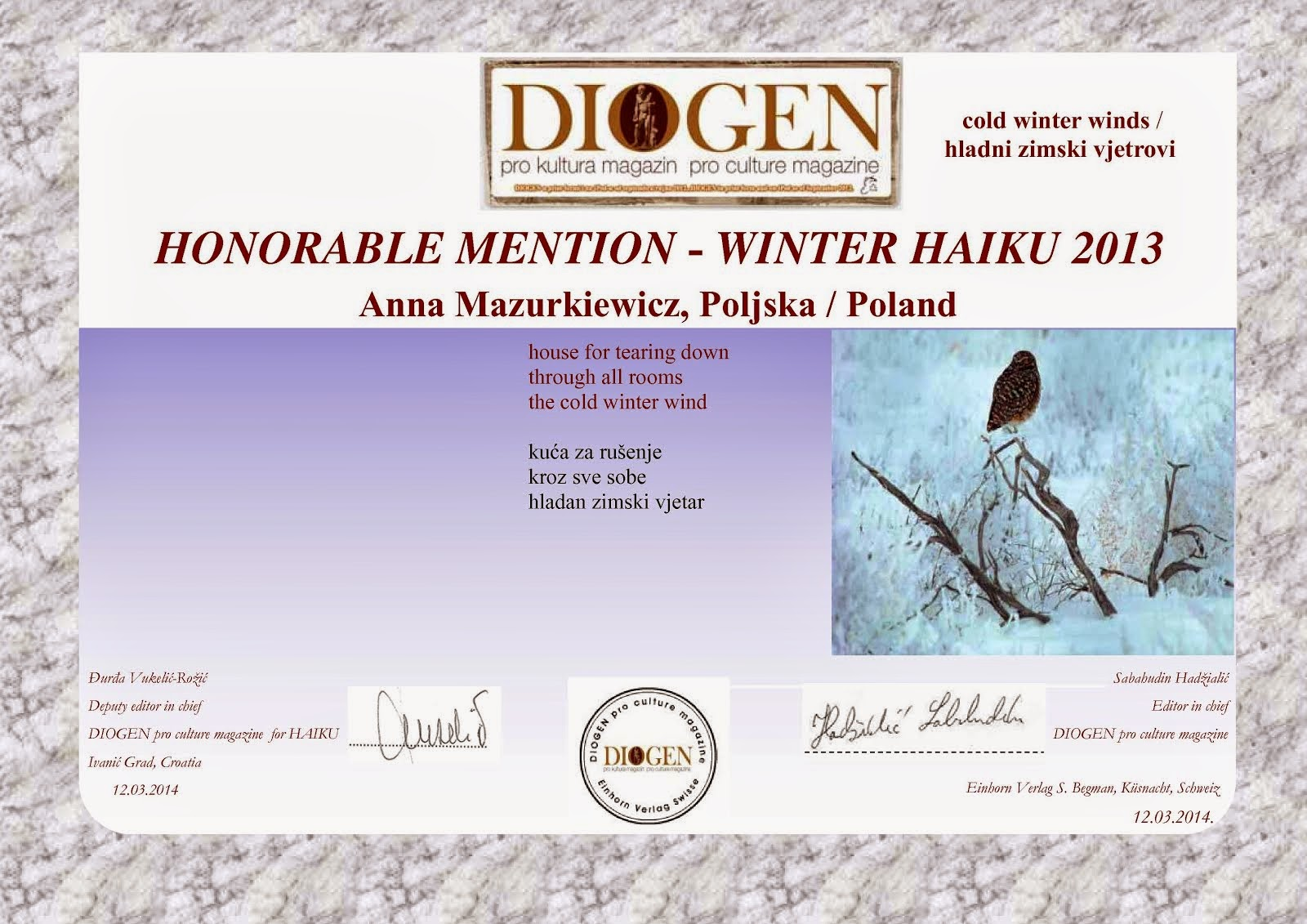 Diogen Winter Contest 2013