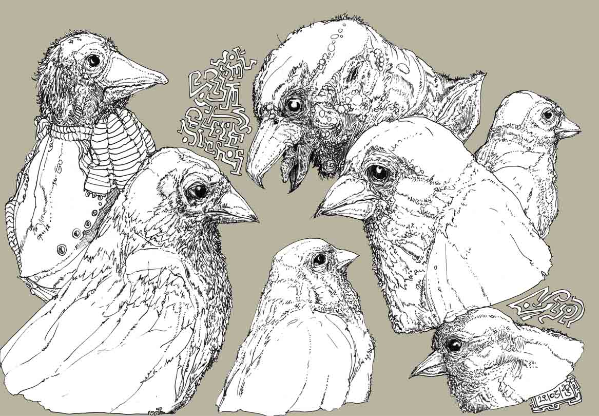 Roland Prinsler Sketch Sheet Bird Character Face Collection