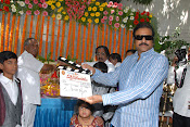 Vaddikasulavadu Movie opening Event Photos Gallery-thumbnail-5