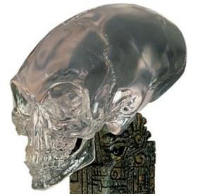 Skull Clothing Uk