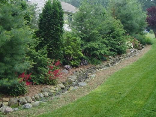 dr dan 39 s garden tips landscaping for privacy. Black Bedroom Furniture Sets. Home Design Ideas