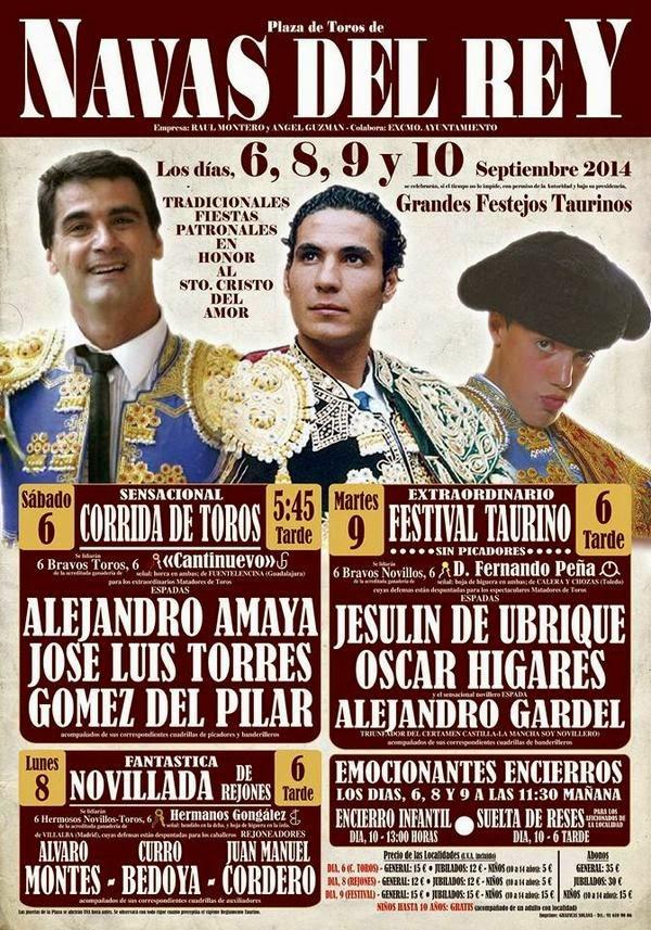 Fiestas cristo del amor 2014 navas del rey madrid - Pavimarsa navas del rey ...