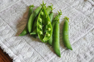 First peas of the 2013 season