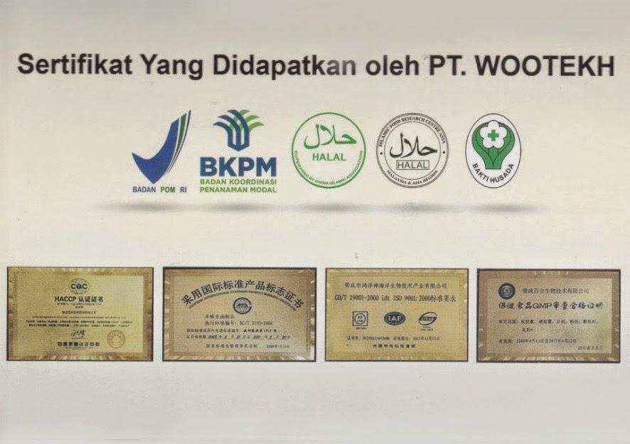 sertifikat%2BPT%2BWOOTEKH.jpg