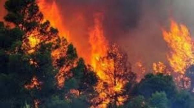 Massive Fire Hit Northern Albania