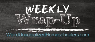 http://www.weirdunsocializedhomeschoolers.com/category/weekly-wrap-up/