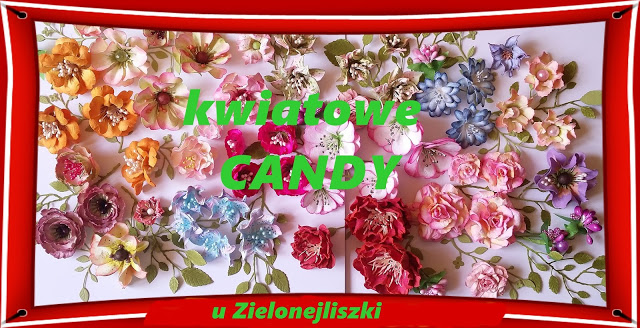 Candy u Zielonej Liszki
