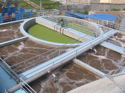 Trình bày thành phần nước thải của một số nhà máy sản xuất giấy và bột giấy.
