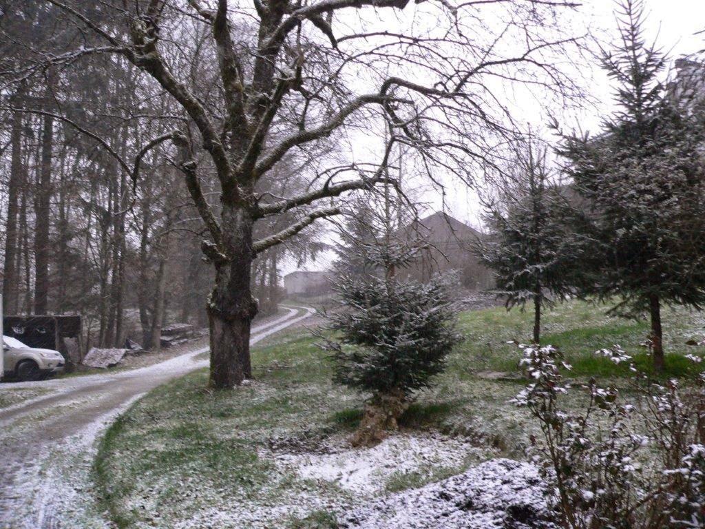 Schneeflocken Weihnachten Winter