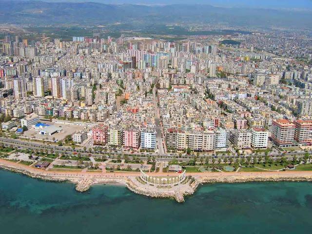 ماهى لؤلؤه البحر المتوسط ؟