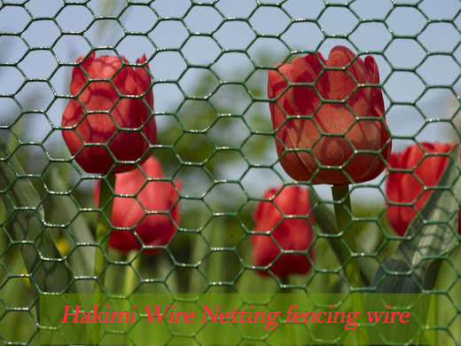 arbed Wire Manufacturer, Barbed Wire Manufacturer In Surat, Barbed Wires   Exporter, Barbed Wires Exporter In Surat, Chain Link Fencing, Crimped Netting Wires, Chain link   Fencing Manufacture