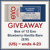 Exo Blueberry-Vanilla Cricket Flour Protein Bars