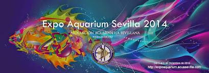 Expo Aquarium Sevilla 2014