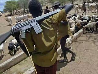 Declare marauding herdsmen as terrorists – NANS tells FG