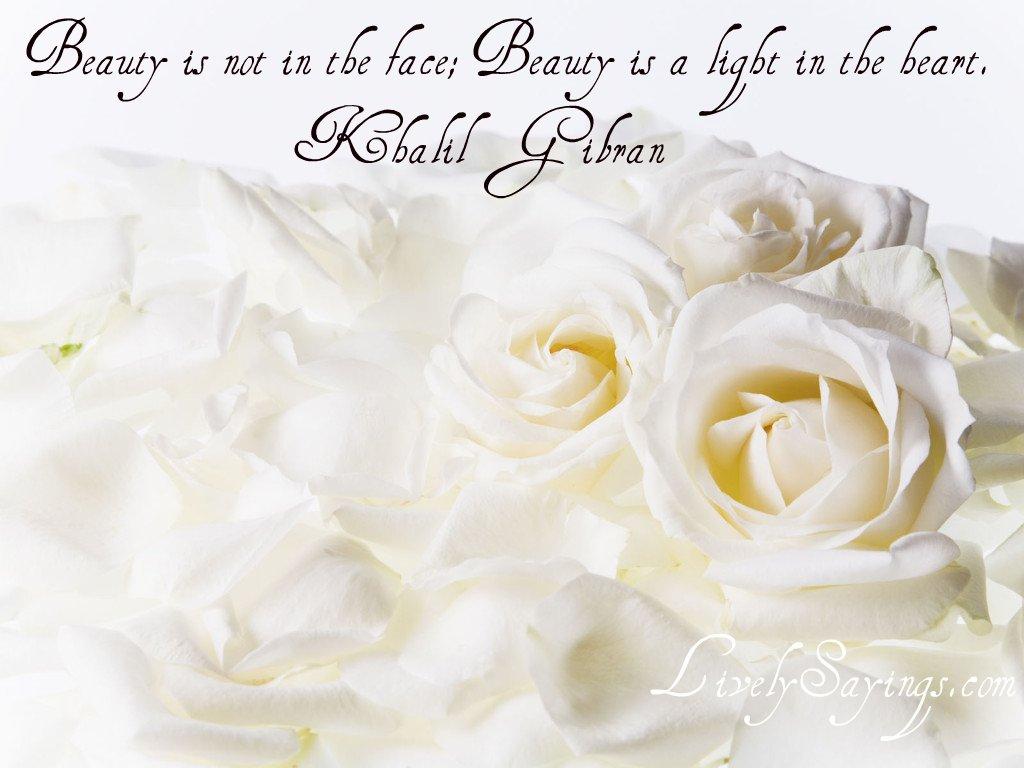 http://3.bp.blogspot.com/-4cEMUEBgdNE/T7-CYylgBgI/AAAAAAAAAb0/2a7ANDfBjeo/s1600/International_Womens_Day_White_roses_on_March_8_01.jpg