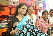 Pochampally Ikat Mela 2014 launch-thumbnail-1