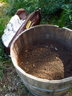 Barrel 1/3 Filled with Rocky Soil