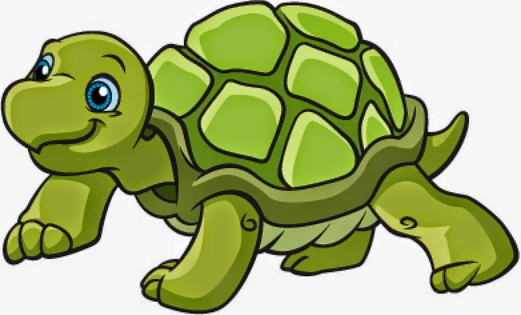 clipart tortue gratuit - photo #10