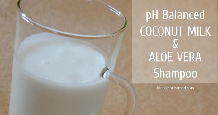 Kanelstrand Homemade Shampoo Review Coconut Milk And
