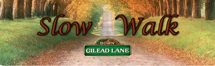 The Slow Walk Down Gilead Lane: Daniel and Dave Discuss Every Episode of DGL
