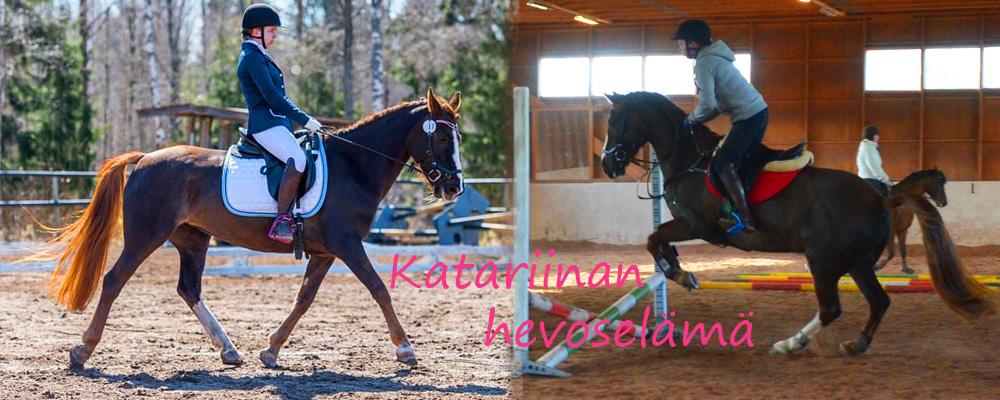 Katariinan hevoselämää