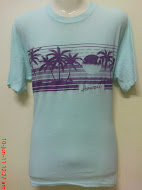 vtg hawaii steadman 50/50