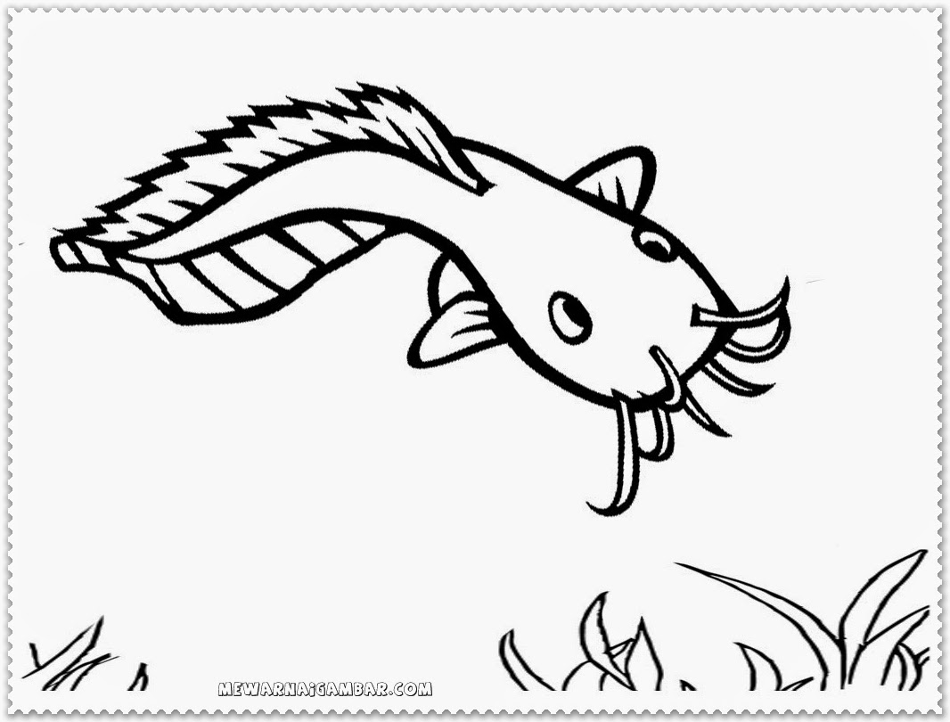 Catfish Coloring Pages Free Printable Kids Coloring Pages