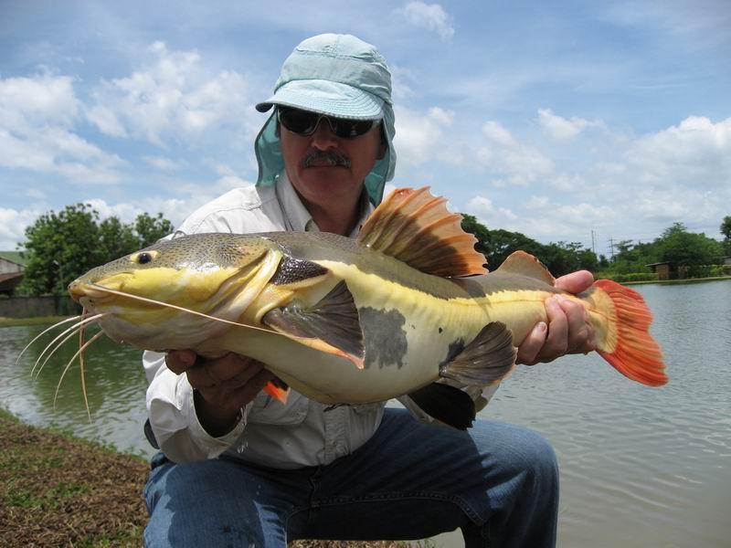Pesca intorno al mondo world catfishing for Grosso pesce di lago