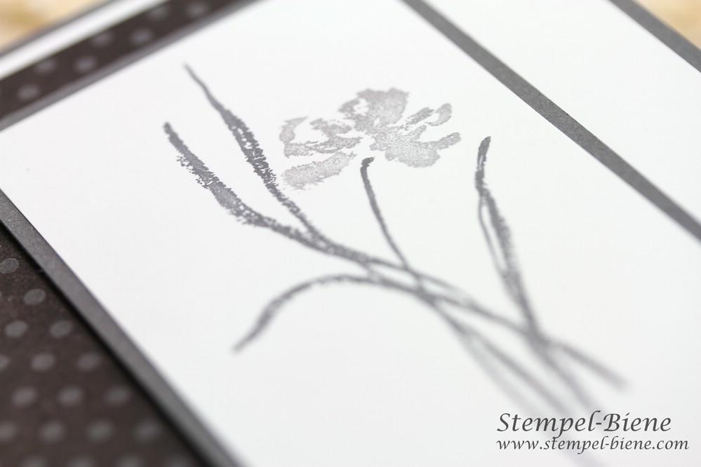 Trauerkarte basteln, Stampin' Up Mit tiefstem Mitgefühl, Stampin' Up Jahreskatalog 2014-2015, Stampin' Up Sammelbestellung, Stempel-biene, Stampin Up Stempelparty buchen