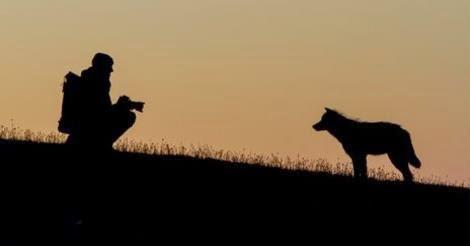 Ο λύκος θα σε συναντήσει…. μόνο όταν έχει κάτι να σου πει …[Νανουκ]