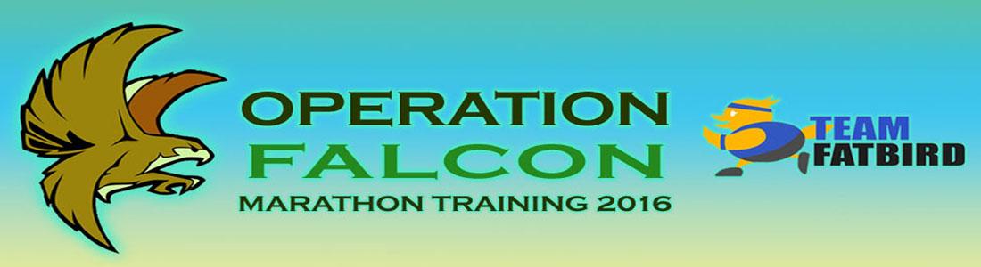 Operation Falcon