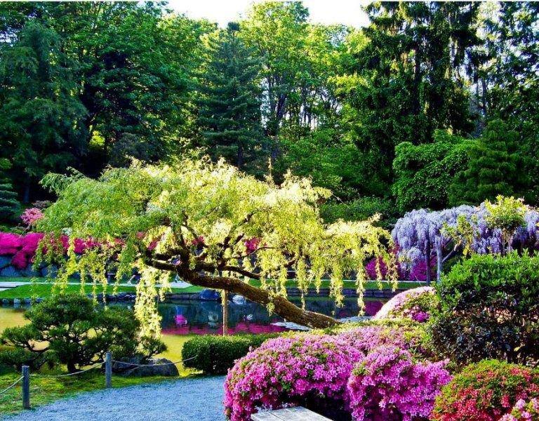 Beautiful Garden Pleasing With Beautiful Flower Garden Images