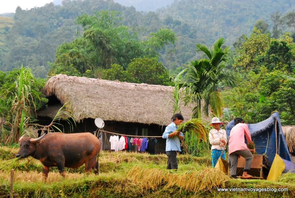 Vietnam Nord Ouest autrement