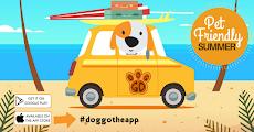 Pet Friendly Summer w/t Doggo