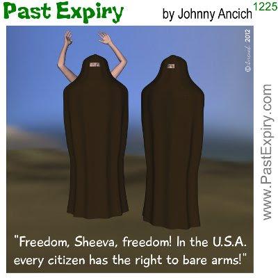 Cartoon about pun, religion, women, US, clothes,