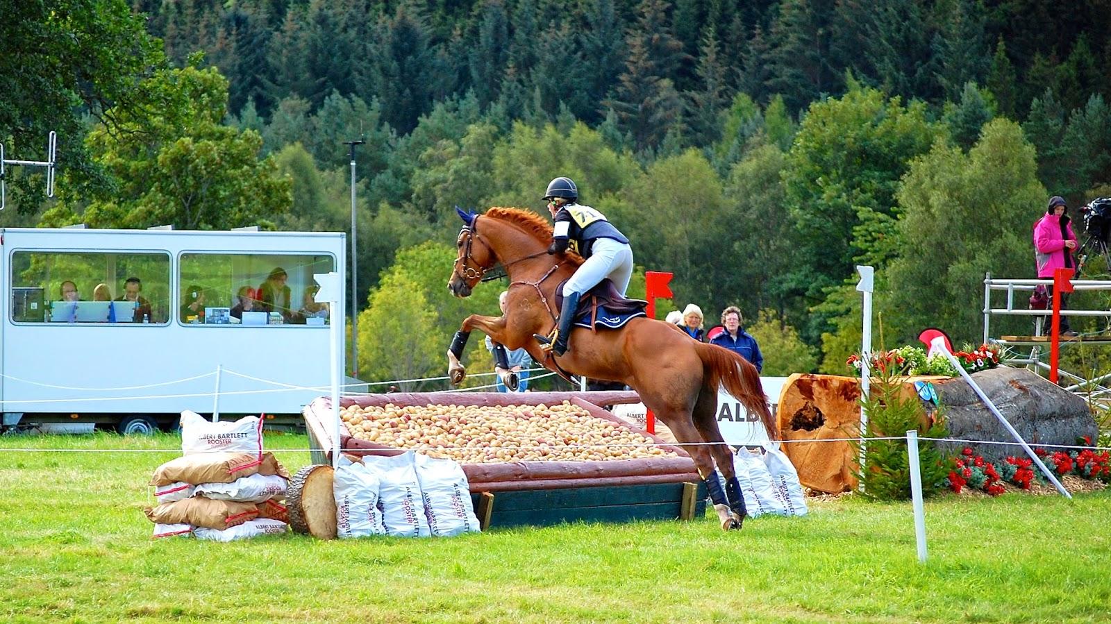 Vegetable table horse jump at Blair Castle International Horse Trials