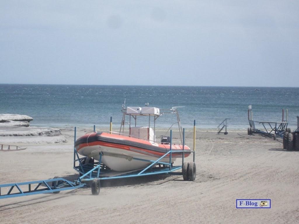 Puerto Madryn - Puerto Pirámides - embarcación para avistaje de ballenas