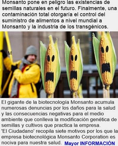 MUNDO: Conozca las 7 formas en las que Monsanto destruye nuestra salud