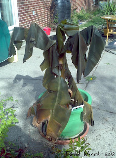 cold temperature killing banana tree, cold temp, winter , kill banana tree