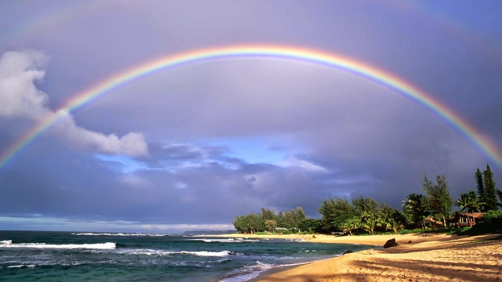 rainbows pictures